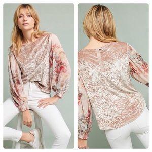 Meadow Rue | Floral Sleeve & Velvet Blouse